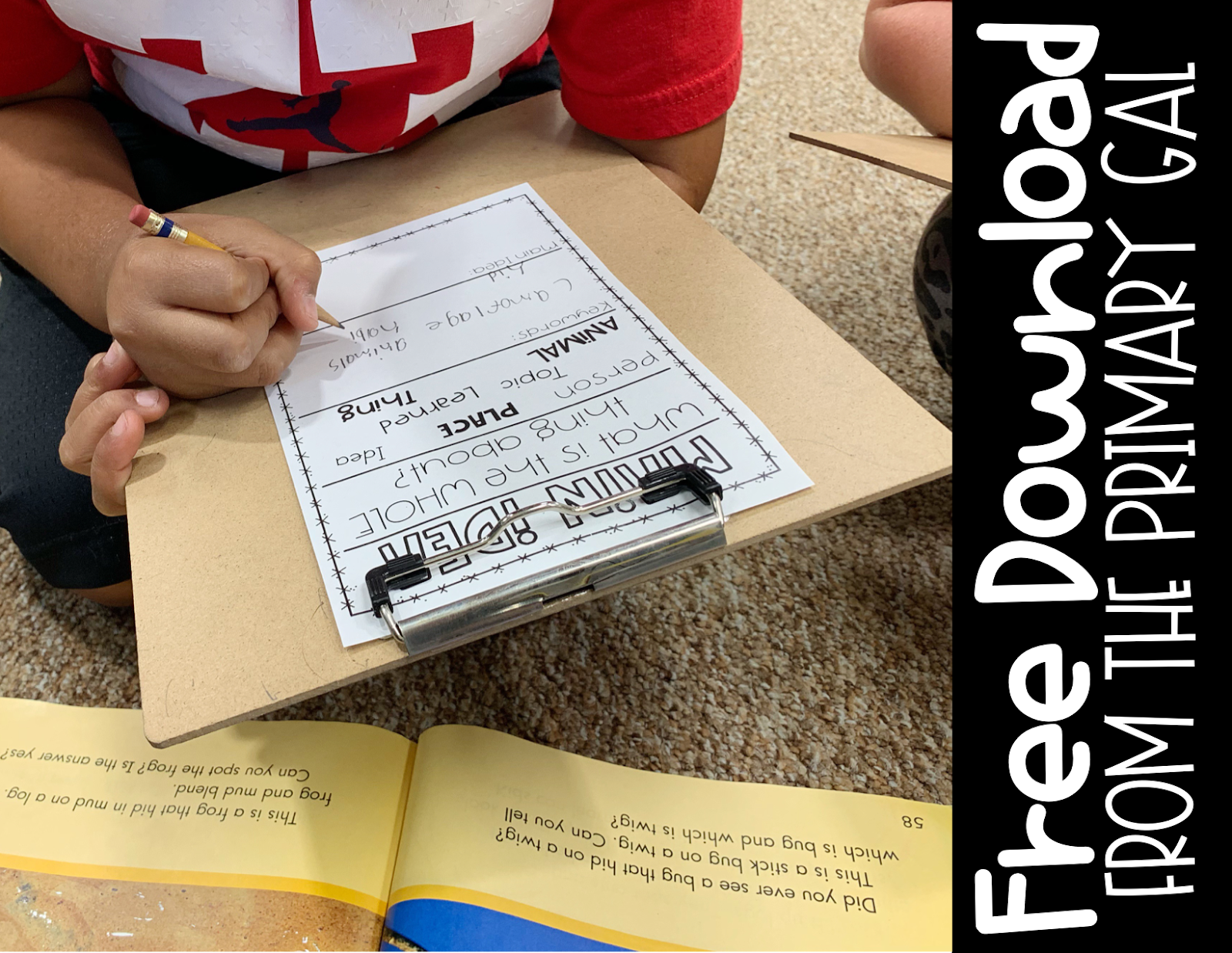 Click here to get your FREE main idea mini anchor chart