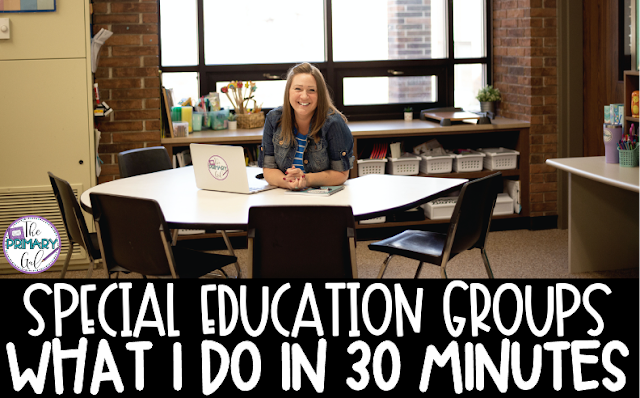 Special Education: What To Do in 30 Minute Groups