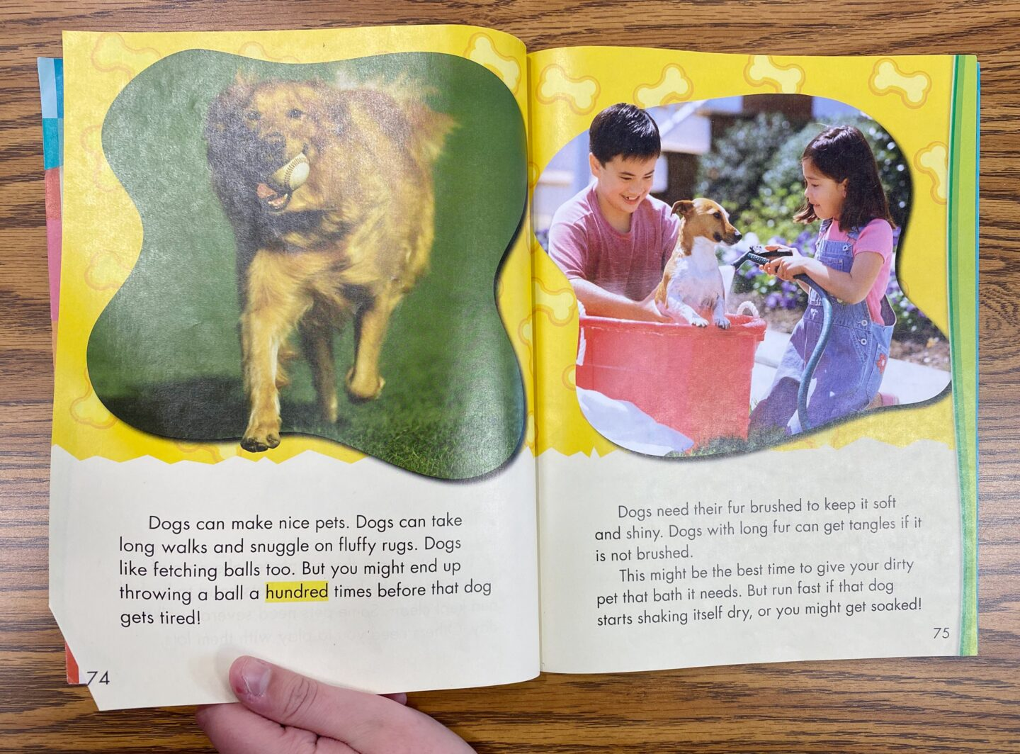 Image of Book Talking about Dogs