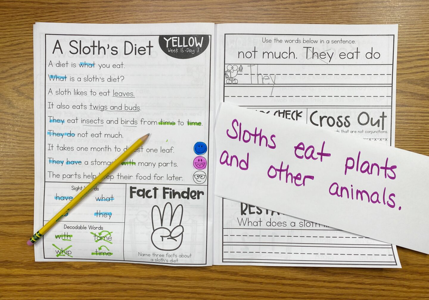 "Image of Primary Gal's Reading Series Book Yellow on a Desk with a Pencil and a Piece of Paper that has the Support Statement ""Sloths eat plants and other animals"" for one of the Quick Activities to Do When Reading Together in a Small Group"